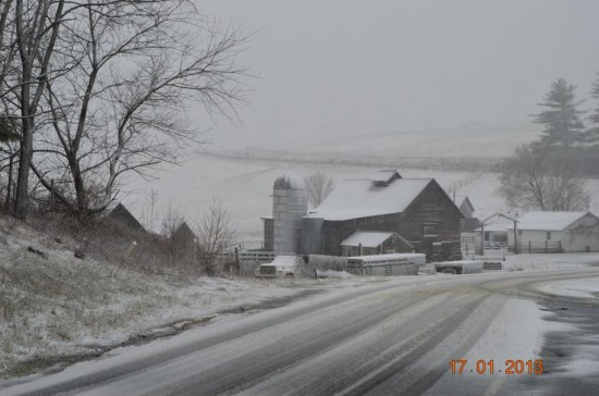 Jan17 Walters Farm Road in Ashe County Brandon Lemly 550x364 Jan 19 20 Conditions/Reports