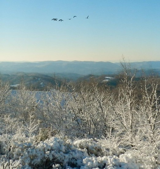 Jan18  shot from Ivy Mountain on the Blue Ridge in Deep Gap looking down towards Lenoi Sheron White Hagelston1 522x550 Friday Jan 18 Conditions/Reports