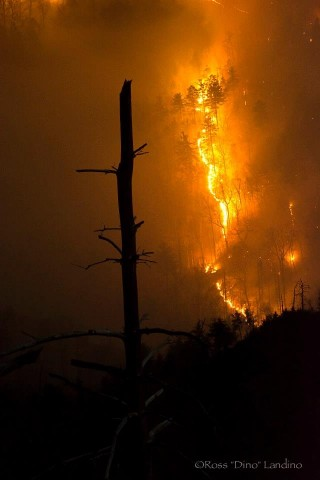 Table Rock Fire_Dino (4)