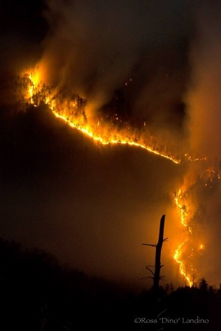 Table Rock Fire_Dino (6)
