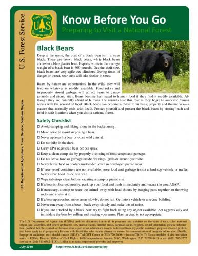 bear tips