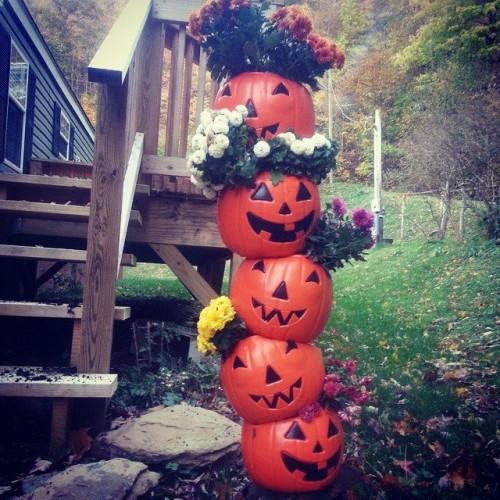 Oct 17_Melissa Townsend