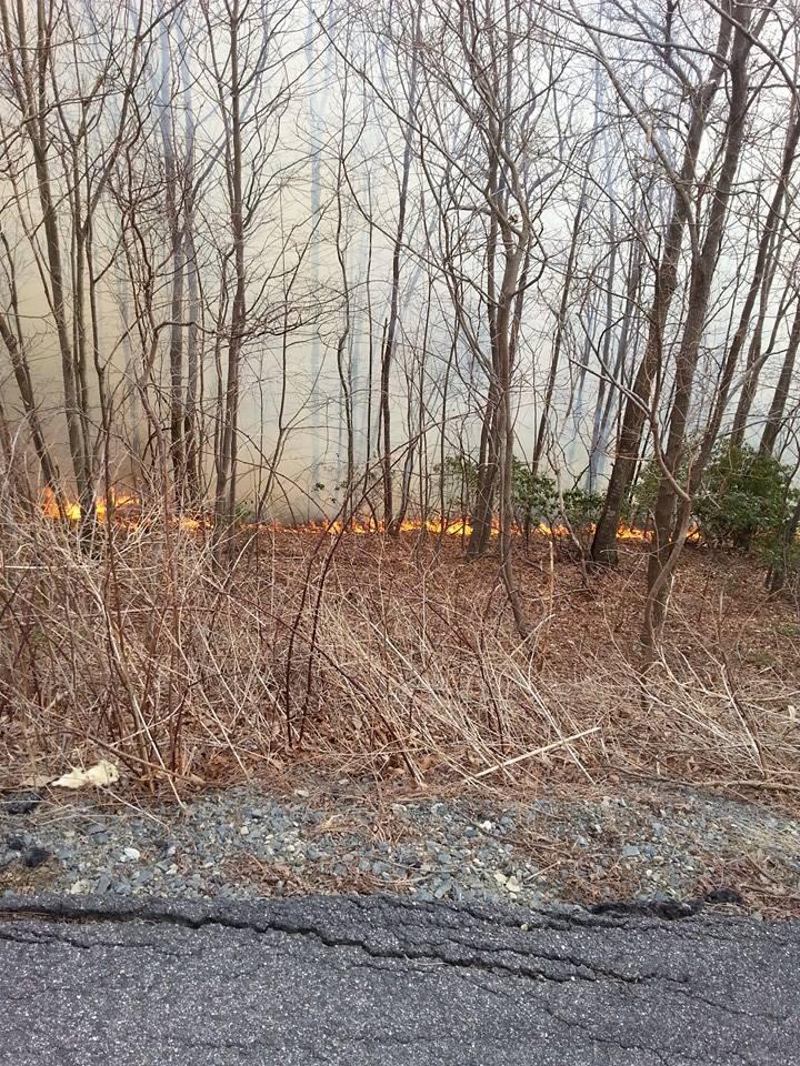 Ivy Ridge Road Fire6_Sheron Hagelston