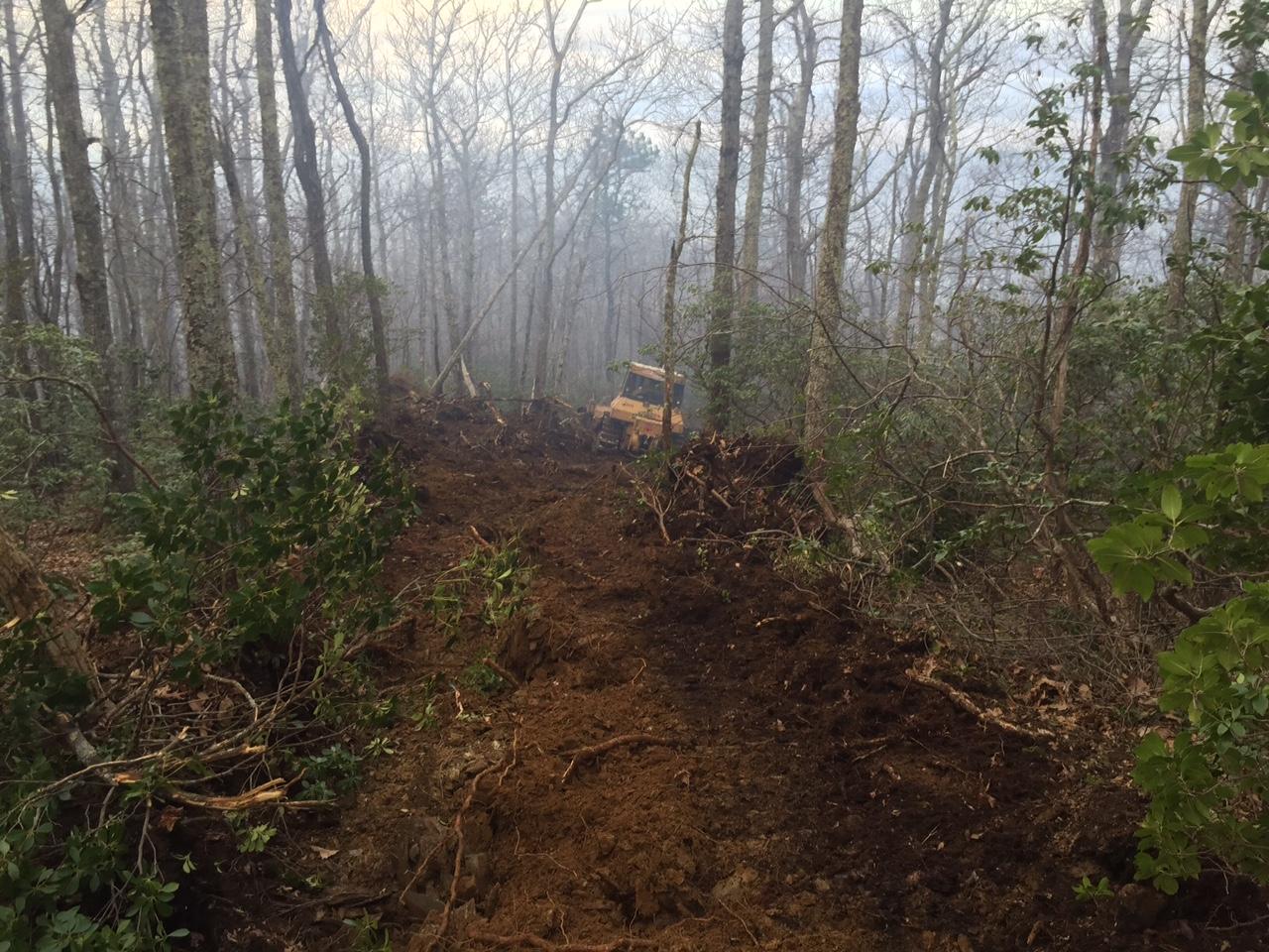 Fire April 11 (3)