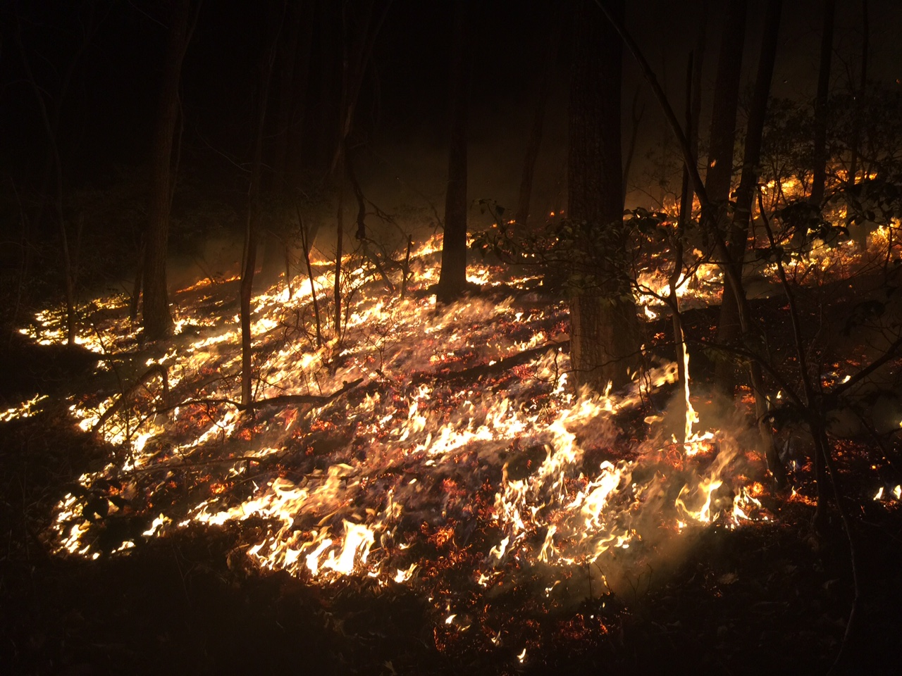Fire April 11 (4)