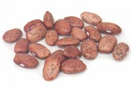 """August 1 Begins """"Beans In The Jar"""" Month To Predict Upcoming Winter Snow"""