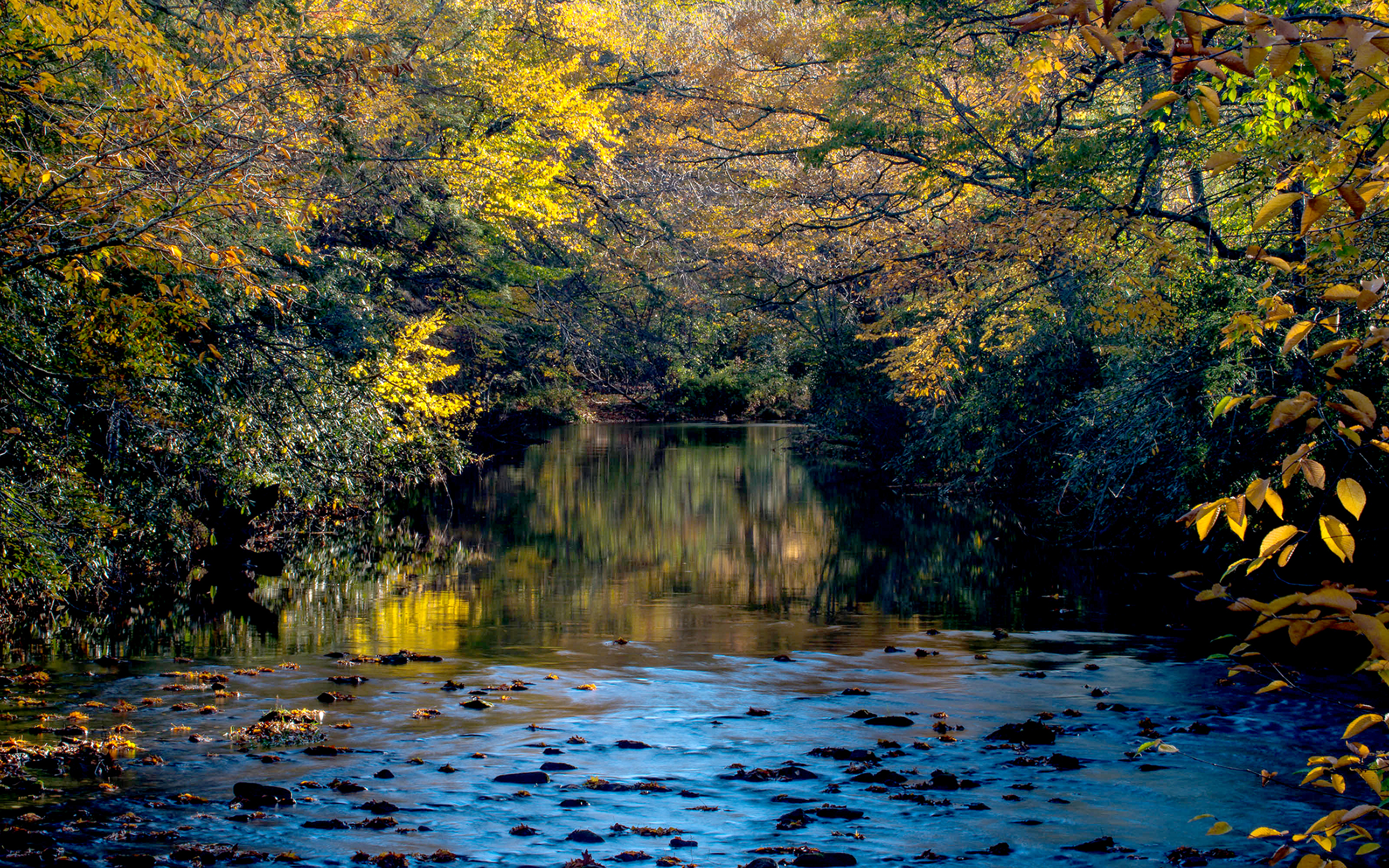 Oct 14 101415_linville_river_SS