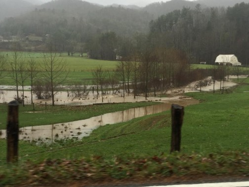 Nov 9 flooding 194 in VC3_Hope Reales
