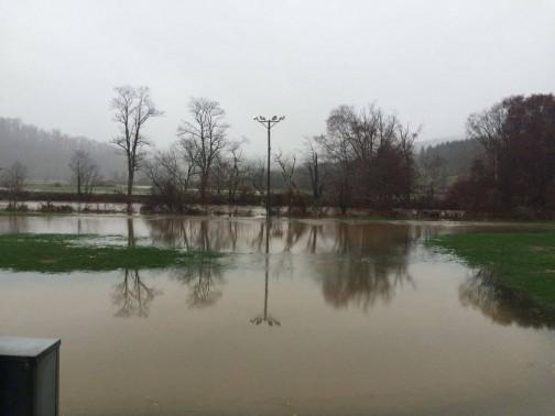 Nov 9_Brookshire Park near the ASU soccer fields2_Christy Rivers
