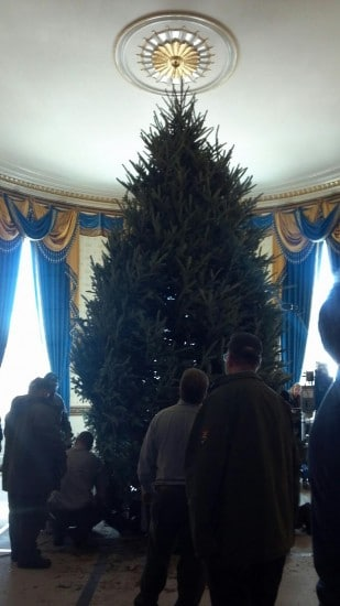 NC Christmas Tree Arrives At White House