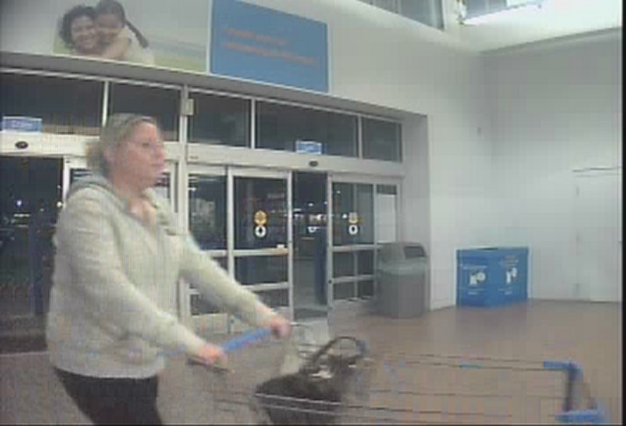 Police Looking For Ipad/Ipod Thieves