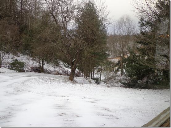 Dec30_Near Willow Valley_Jane Arnette