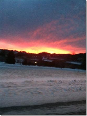 Feb 4_From fairway drive this am_Courteney Sanderford