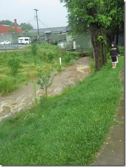 July 3_Kraut Creek_Amber Mellon