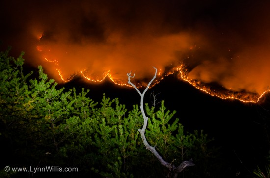 LG_table_rock_fire_127