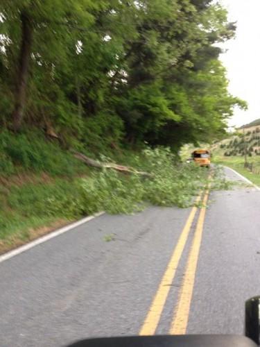 Mayy 22 Brownwood Rd Tree down