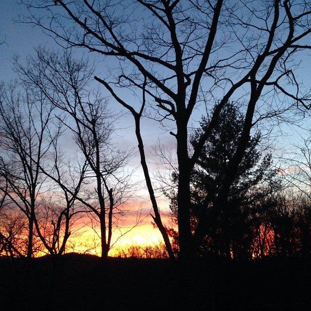 Sunset March 16 Drew Petrey